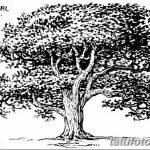 фото Эскизы тату лес от 29.09.2017 №008 - Sketches of a forest tattoo - tatufoto.com