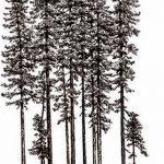 фото Эскизы тату лес от 29.09.2017 №012 - Sketches of a forest tattoo - tatufoto.com