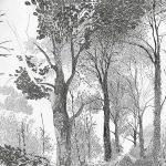 фото Эскизы тату лес от 29.09.2017 №063 - Sketches of a forest tattoo - tatufoto.com