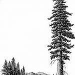 фото Эскизы тату лес от 29.09.2017 №064 - Sketches of a forest tattoo - tatufoto.com