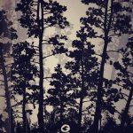 фото Эскизы тату лес от 29.09.2017 №096 - Sketches of a forest tattoo - tatufoto.com