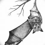 фото Эскизы тату летучая мышь от 27.09.2017 №026 - Sketches a bat tattoo - tatufoto.com