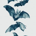 фото Эскизы тату летучая мышь от 27.09.2017 №027 - Sketches a bat tattoo - tatufoto.com