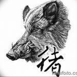 фото Эскизы тату свинья (кабан) от 26.09.2017 №005 - Sketches of a pig - tatufoto.com
