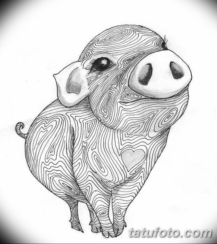 фото Эскизы тату свинья (кабан) от 26.09.2017 №007 - Sketches of a pig - tatufoto.com