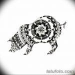 фото Эскизы тату свинья (кабан) от 26.09.2017 №010 - Sketches of a pig - tatufoto.com