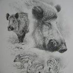 фото Эскизы тату свинья (кабан) от 26.09.2017 №020 - Sketches of a pig - tatufoto.com