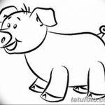 фото Эскизы тату свинья (кабан) от 26.09.2017 №022 - Sketches of a pig - tatufoto.com