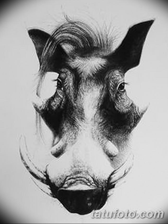фото Эскизы тату свинья (кабан) от 26.09.2017 №027 - Sketches of a pig - tatufoto.com