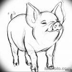 фото Эскизы тату свинья (кабан) от 26.09.2017 №029 - Sketches of a pig - tatufoto.com