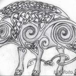 фото Эскизы тату свинья (кабан) от 26.09.2017 №030 - Sketches of a pig - tatufoto.com
