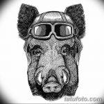 фото Эскизы тату свинья (кабан) от 26.09.2017 №031 - Sketches of a pig - tatufoto.com