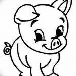 фото Эскизы тату свинья (кабан) от 26.09.2017 №034 - Sketches of a pig - tatufoto.com