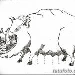 фото Эскизы тату свинья (кабан) от 26.09.2017 №038 - Sketches of a pig - tatufoto.com