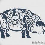фото Эскизы тату свинья (кабан) от 26.09.2017 №042 - Sketches of a pig - tatufoto.com