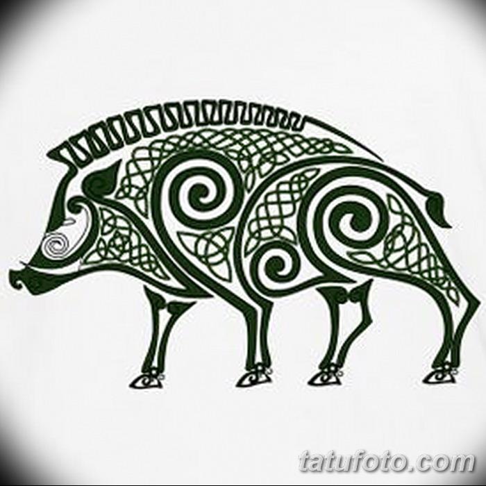 фото Эскизы тату свинья (кабан) от 26.09.2017 №044 - Sketches of a pig - tatufoto.com