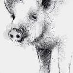 фото Эскизы тату свинья (кабан) от 26.09.2017 №047 - Sketches of a pig - tatufoto.com