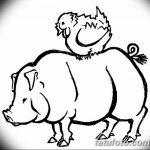 фото Эскизы тату свинья (кабан) от 26.09.2017 №057 - Sketches of a pig - tatufoto.com