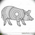 фото Эскизы тату свинья (кабан) от 26.09.2017 №058 - Sketches of a pig - tatufoto.com