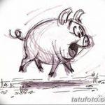 фото Эскизы тату свинья (кабан) от 26.09.2017 №059 - Sketches of a pig - tatufoto.com
