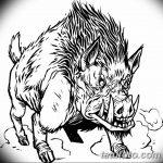 фото Эскизы тату свинья (кабан) от 26.09.2017 №067 - Sketches of a pig - tatufoto.com