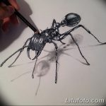 фото Эскиз тату муравей от 07.09.2017 №003 - Sketch of an ant tattoo - tatufoto.com