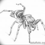 фото Эскиз тату муравей от 07.09.2017 №041 - Sketch of an ant tattoo - tatufoto.com