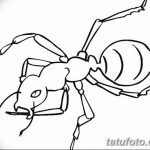 фото Эскиз тату муравей от 07.09.2017 №049 - Sketch of an ant tattoo - tatufoto.com