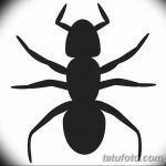 фото Эскиз тату муравей от 07.09.2017 №069 - Sketch of an ant tattoo - tatufoto.com