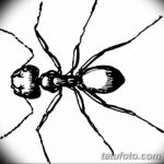 фото Эскиз тату муравей от 07.09.2017 №078 - Sketch of an ant tattoo - tatufoto.com