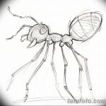 фото Эскиз тату муравей от 07.09.2017 №092 - Sketch of an ant tattoo - tatufoto.com