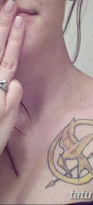 фото тату Сойка пересмешница от 25.09.2017 №034 – Tattoo Hunger Games – tatufoto.com