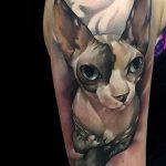 фото тату Сфинкс египет от 29.09.2017 №007 - tattoo sphinx egypt - tatufoto.com