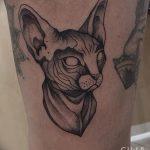 фото тату Сфинкс египет от 29.09.2017 №010 - tattoo sphinx egypt - tatufoto.com