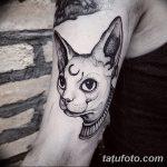 фото тату Сфинкс египет от 29.09.2017 №039 - tattoo sphinx egypt - tatufoto.com