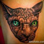 фото тату Сфинкс египет от 29.09.2017 №046 - tattoo sphinx egypt - tatufoto.com