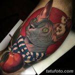 фото тату Сфинкс египет от 29.09.2017 №051 - tattoo sphinx egypt - tatufoto.com