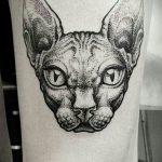 фото тату Сфинкс египет от 29.09.2017 №076 - tattoo sphinx egypt - tatufoto.com