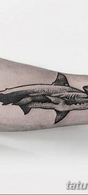 фото тату акула-молот от 25.09.2017 №004 – tattoo hammerhead shark – tatufoto.com