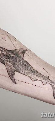 фото тату акула-молот от 25.09.2017 №032 – tattoo hammerhead shark – tatufoto.com