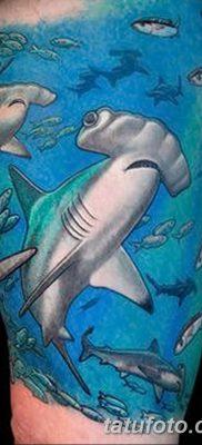 фото тату акула-молот от 25.09.2017 №041 – tattoo hammerhead shark – tatufoto.com
