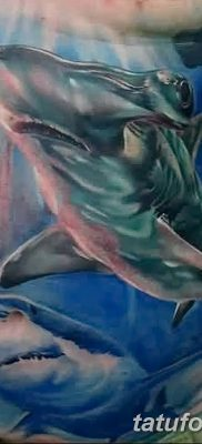 фото тату акула-молот от 25.09.2017 №065 – tattoo hammerhead shark – tatufoto.com