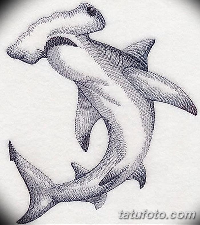 фото тату акула-молот от 25.09.2017 №069 - tattoo hammerhead shark - tatufoto.com