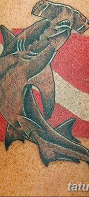 фото тату акула-молот от 25.09.2017 №072 – tattoo hammerhead shark – tatufoto.com