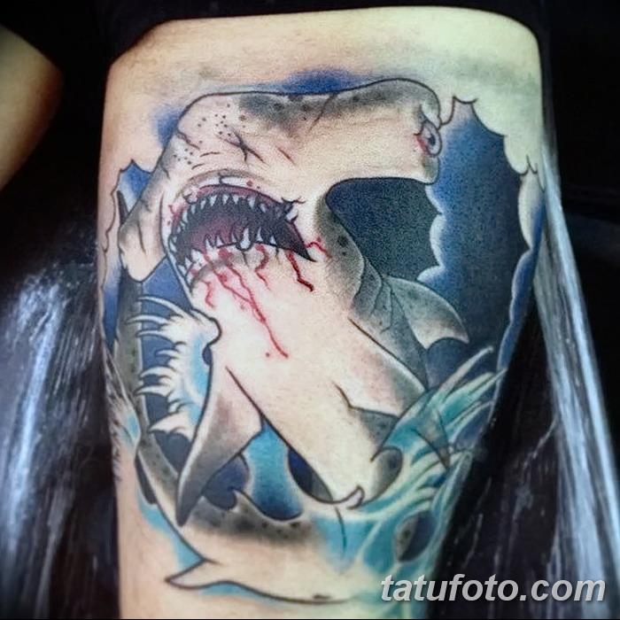 фото тату акула-молот от 25.09.2017 №109 - tattoo hammerhead shark - tatufoto.com