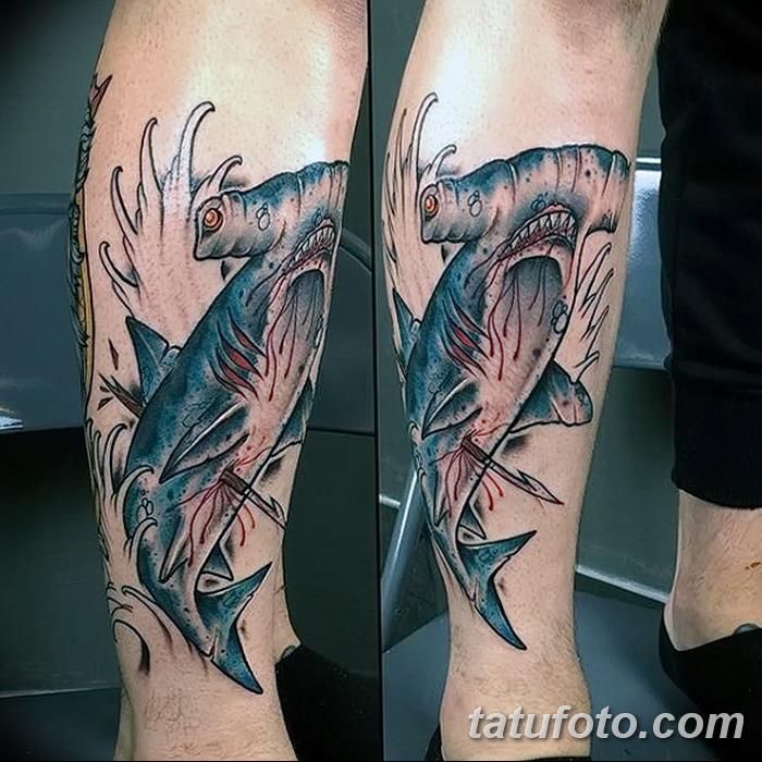 фото тату акула-молот от 25.09.2017 №121 - tattoo hammerhead shark - tatufoto.com