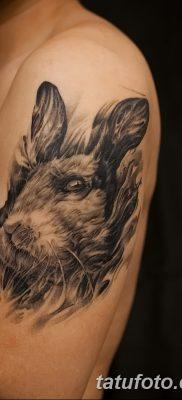 фото тату заяц от 02.09.2017 №020 – tatoos hare – tatufoto.com