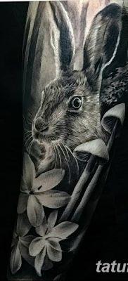 фото тату заяц от 02.09.2017 №042 – tatoos hare – tatufoto.com