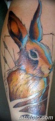 фото тату заяц от 02.09.2017 №043 – tatoos hare – tatufoto.com