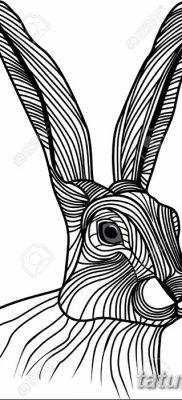 фото тату заяц от 02.09.2017 №046 – tatoos hare – tatufoto.com